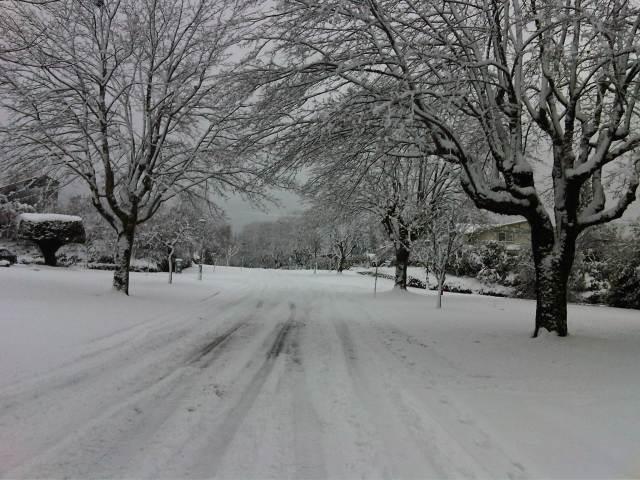 College Highroad, December 19