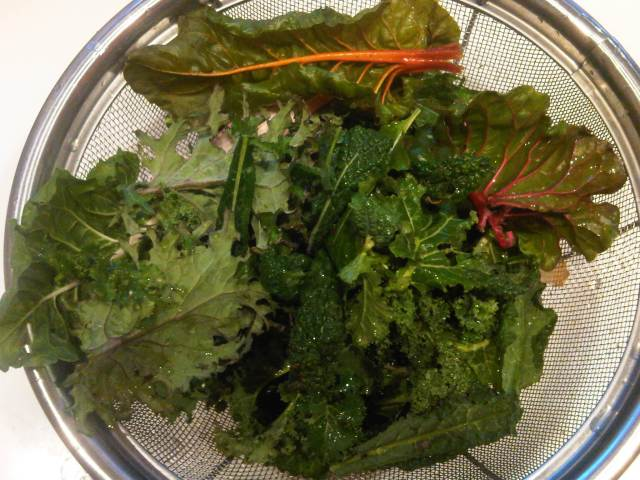 Winter chard and kale