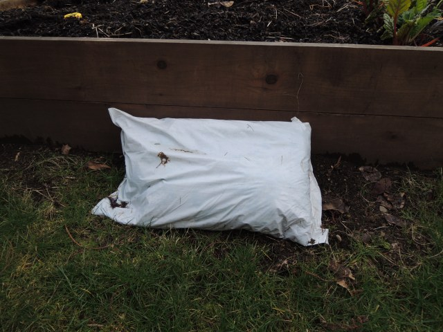 This is one of the last bags of manure left over from last year, blocking a rodent burrow.