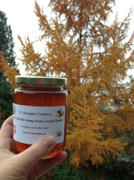 Kits/UBC honey. Fall larch in the background.