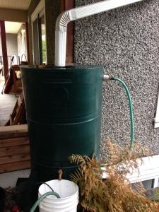 Typical Vancouver rain barrel